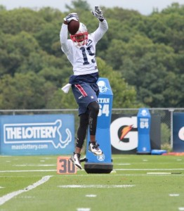 Brandon LaFell makes a leaping catch (Photo By Chris Ferreeira)